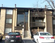 6188 Pinewood Court Unit 307, Willowbrook image