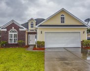 112 Carolina Pointe Way, Little River image
