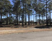 8988 Floratino Ct, Myrtle Beach image