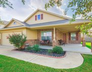 3813 Heron Roost Pass, Pflugerville image