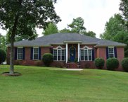 116 Mossy Branch Drive, Harvest image