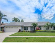 14921 Lake Forest Drive, Lutz image