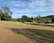 1482  American River Trail, Cool image