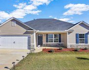 125 Barred Owl Drive, Fountain Inn image