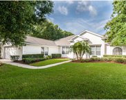 9054 Laurel Ridge Drive, Mount Dora image