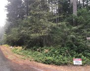 12824 98th St Ct, Anderson Island image