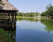 Shallow Springs Cove, Fairhope image