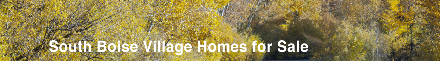 South Boise Village Homes for Sale