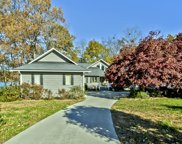 153 Cheeskogili Way, Loudon image