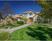 987 Fairchild Drive, Highlands Ranch image