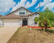 34451 Windknob Court, Wesley Chapel image
