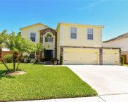 12938 Tribute Drive, Riverview image