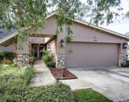 3418 Tanglewood Terrace, Palm Harbor image
