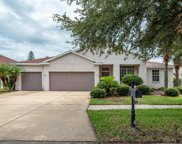 11003 Stone Branch Drive, Riverview image