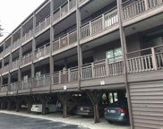 215 3rd Ave. N Unit 253, North Myrtle Beach image