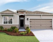 13342 Waterleaf Garden Circle, Riverview image