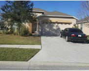 30541 Norseman Place, Wesley Chapel image
