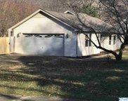 1305 Se Chimney Springs Drive, Huntsville image