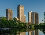 2550 North Lakeview Avenue Unit N602, Chicago image