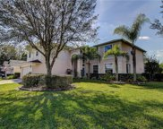 16306 Doune Court, Tampa image