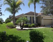 11657 Old Cypress Cove, Parrish image