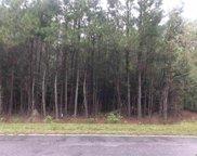 4053 N Highway 41A, Mullins image