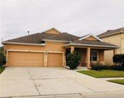 20136 Oakflower Avenue, Tampa image