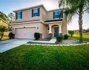 2606 Holly Bluff Court, Plant City image