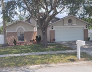 4702 Dunquin Place, Tampa image