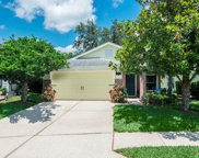 5168 Sterling Manor Drive, Tampa image