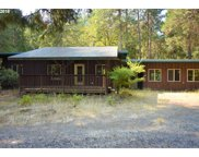 91950 MILL CREEK  RD, Blue River image