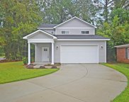 1910 Chestnut Oak Lane, Charleston image