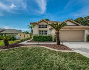9631 Oakwood Hills Court, New Port Richey image
