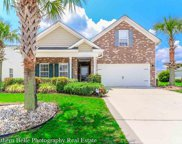 4213 Vista Wood, Myrtle Beach image