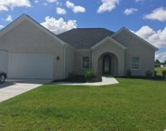 263 Vineyard Lake Circle, Conway image