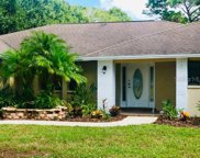 12510 Twin Branch Acres Road, Tampa image