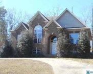 917 Southern Oaks Ln, Odenville image