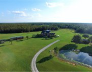 6822 S Fork Ranch Drive, Clermont image