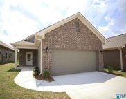 860 Maple Trc, Odenville image