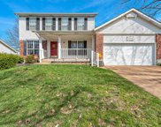 4818 Pipestone  Court, St Louis image