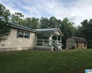 700 Mountain Springs Est, Odenville image