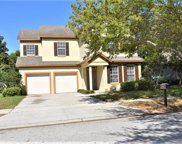 6842 Mapperton Drive, Windermere image