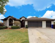 4890 Abaco Drive, Tavares image