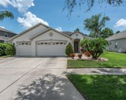 11304 Callaway Pond Drive, Riverview image