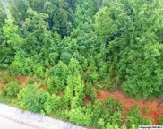 109 Lookout Mountain Drive, Scottsboro image