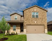 6353 Hibiscus, New Braunfels image