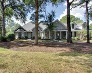 164 Black Duck Rd., Pawleys Island image