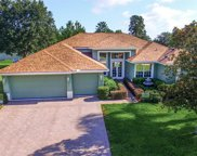 9065 Laurel Ridge Drive, Mount Dora image