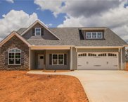 6566 Bellawood Drive, Trinity image