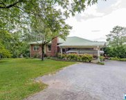 3113 Old Ivy Rd, Irondale image